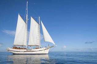 amalfi day charters
