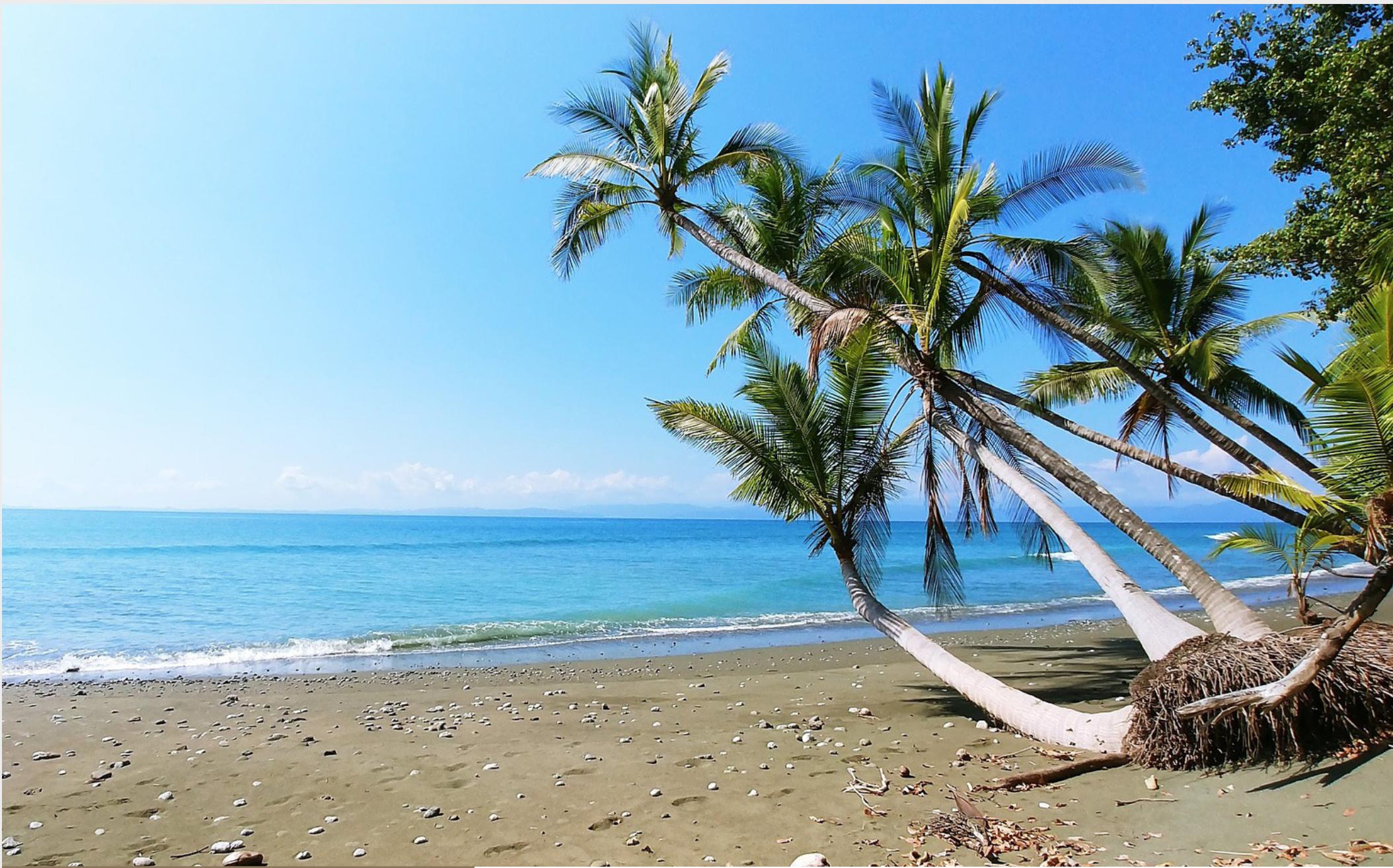 Enjoy the Beach