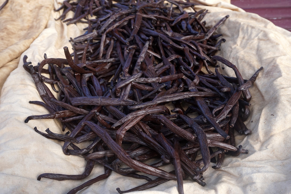 Taha'a vanilla discover on your bareboat yacht charter