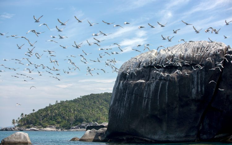 local geography in the stunning anambas islands