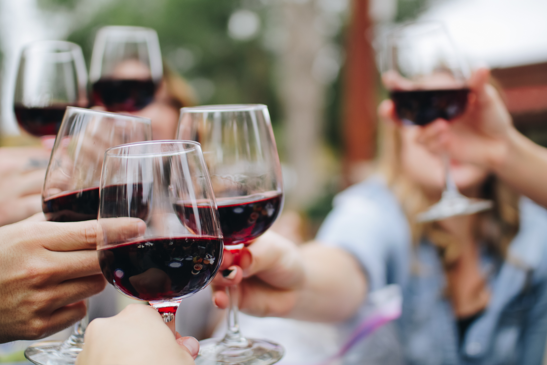 wine, vineyard, drink, france, bandol, grapes