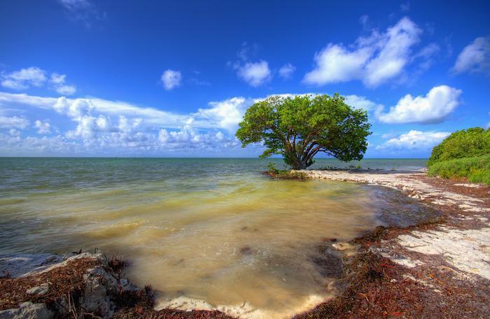 Islamorada, Florida Keys Overview and Charter Yachts