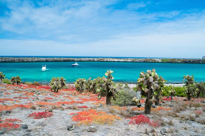Charter a yacht to the Galapagos Islands