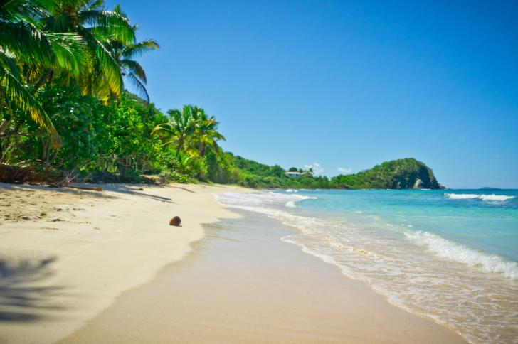 Caribbean Sea Yacht Charter And Sailing Vacation Guide Charter A
