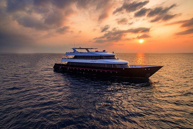 Charter Yacht AZALEA - 9 Cabins - Maldives, Indian Ocean