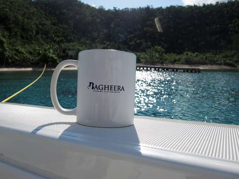 BAGHEERA - Lagoon 620