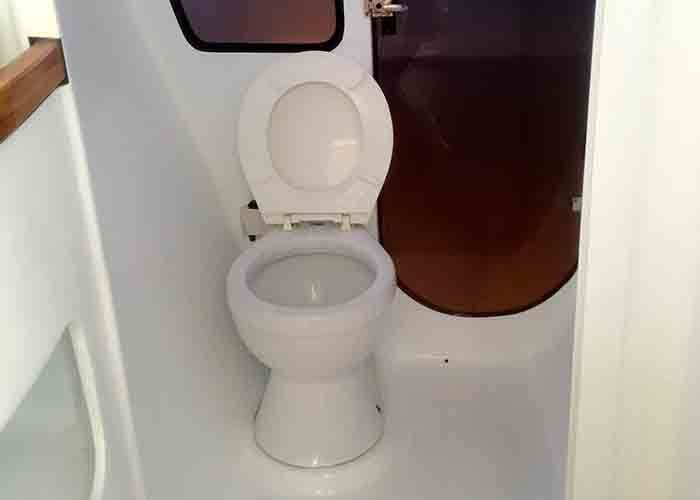 Custom 38 Cat - Toilet
