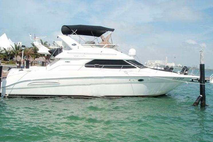 Charter Yacht Sea Ray 45 - 2 Cabins - Cancun - Isla Mujeres - Playa Del Carmen