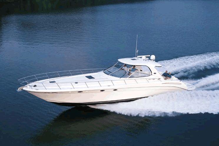 Charter Yacht Sea Ray 54 Sundancer - 2 Cabins - Cancun - Isla Mujeres - Playa Del Carmen