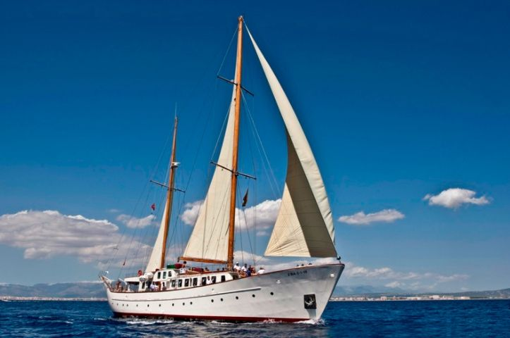 SOUTHERN CROSS - Day charter for up to 65 guests - Barcelona